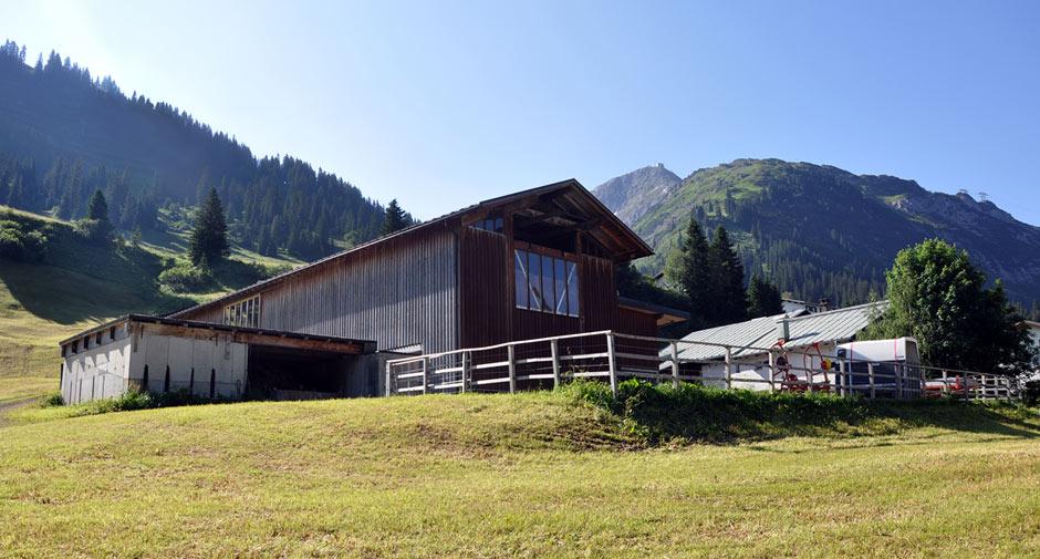 Biobauernhof Lech | Organic Farm